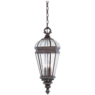 Alexia 3 Light Outdoor Hanging Lantern By Rosalind Wheeler