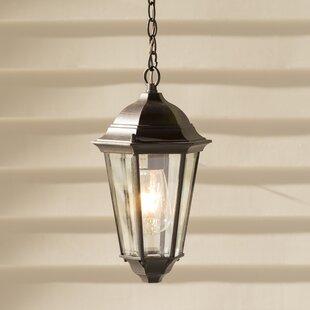 Lark Manor Kenwood 1-Light Hanging Lantern