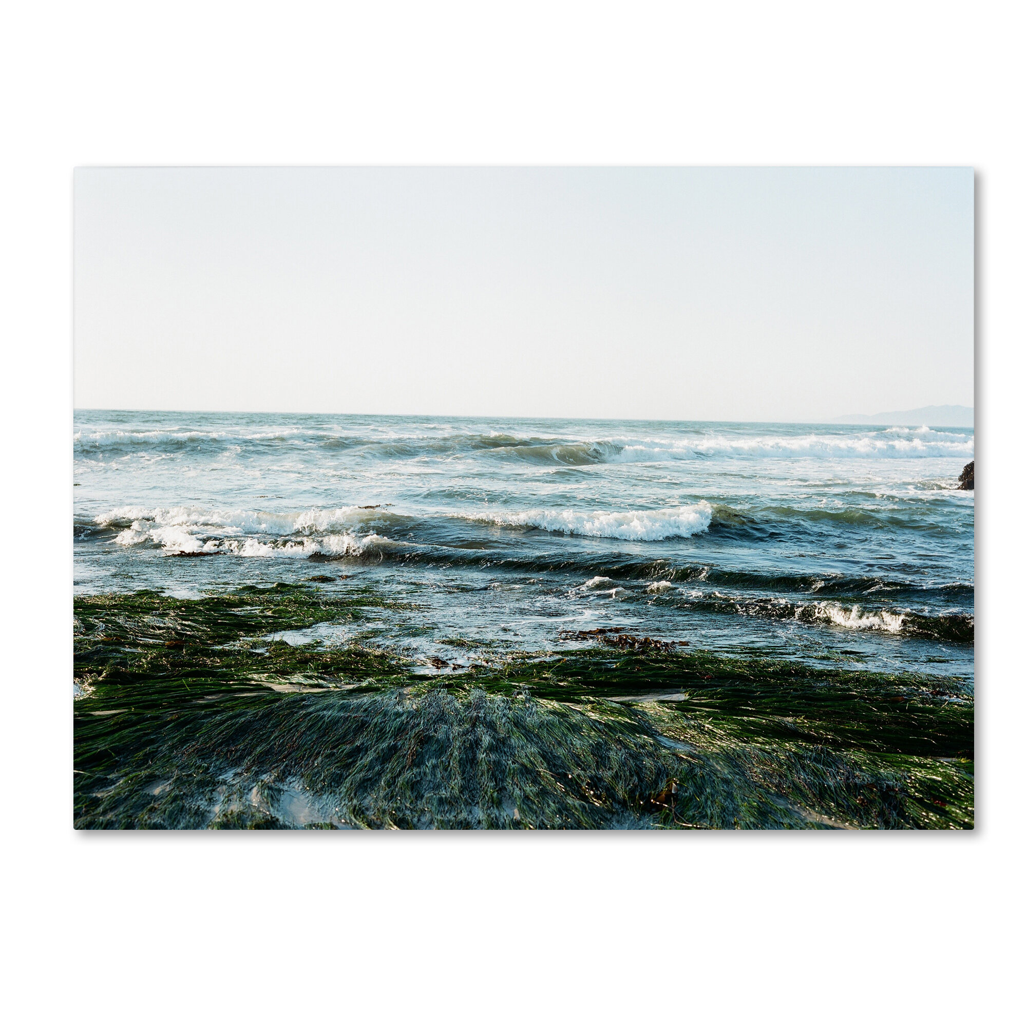 Trademark Art Waves Rolling In By Ariane Moshayedi Photographic Print On Wrapped Canvas Wayfair
