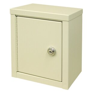 Economy 8 W x 9 H Wall Mounted Cabinet by Omnimed
