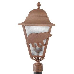 Alcott Hill Penfield Bear Series 3-Light Lantern Head