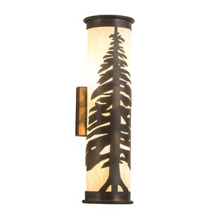 Read Reviews Wylie 2-Light Outdoor Sconce By Loon Peak