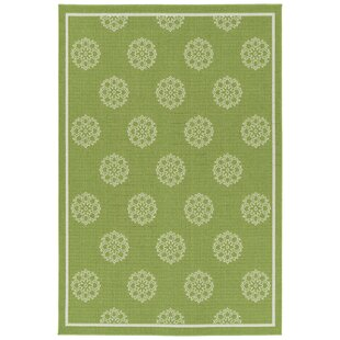 Mikole Lime Green Indoor/Outdoor Area Rug