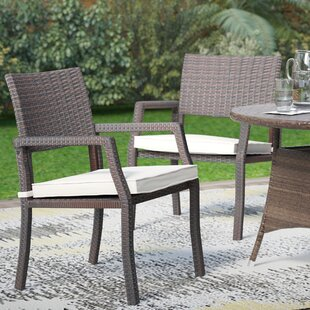 Cheyenne Patio Dining Chair with Cushion (Set of 2)