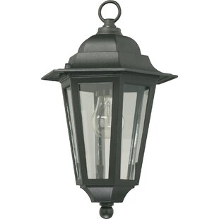 Mehar 1-Light Outdoor Hanging Lantern