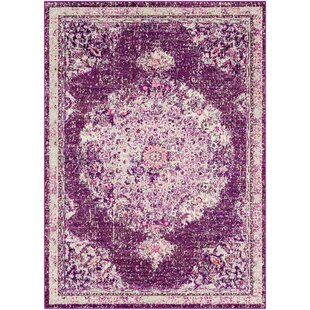 Price comparison Berry Purple/Gray Area Rug By Bungalow Rose