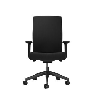 Ash High Back Ergonomic Desk Chair By Symple Stuff