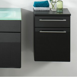 Beckwith 40.5 X 53cm Wall Mounted Cabinet By Wade Logan