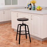 Iconium Swivel Adjustable Height Bar Stool (Set of 2) by Williston Forge