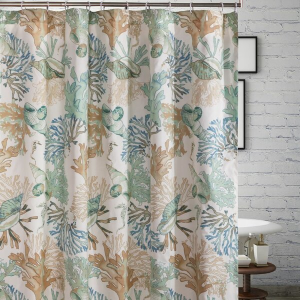 White Seashell Shower Curtain Wayfair