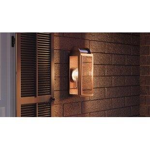 Vidal Outdoor 2-Light Wall Lantern by Gracie Oaks