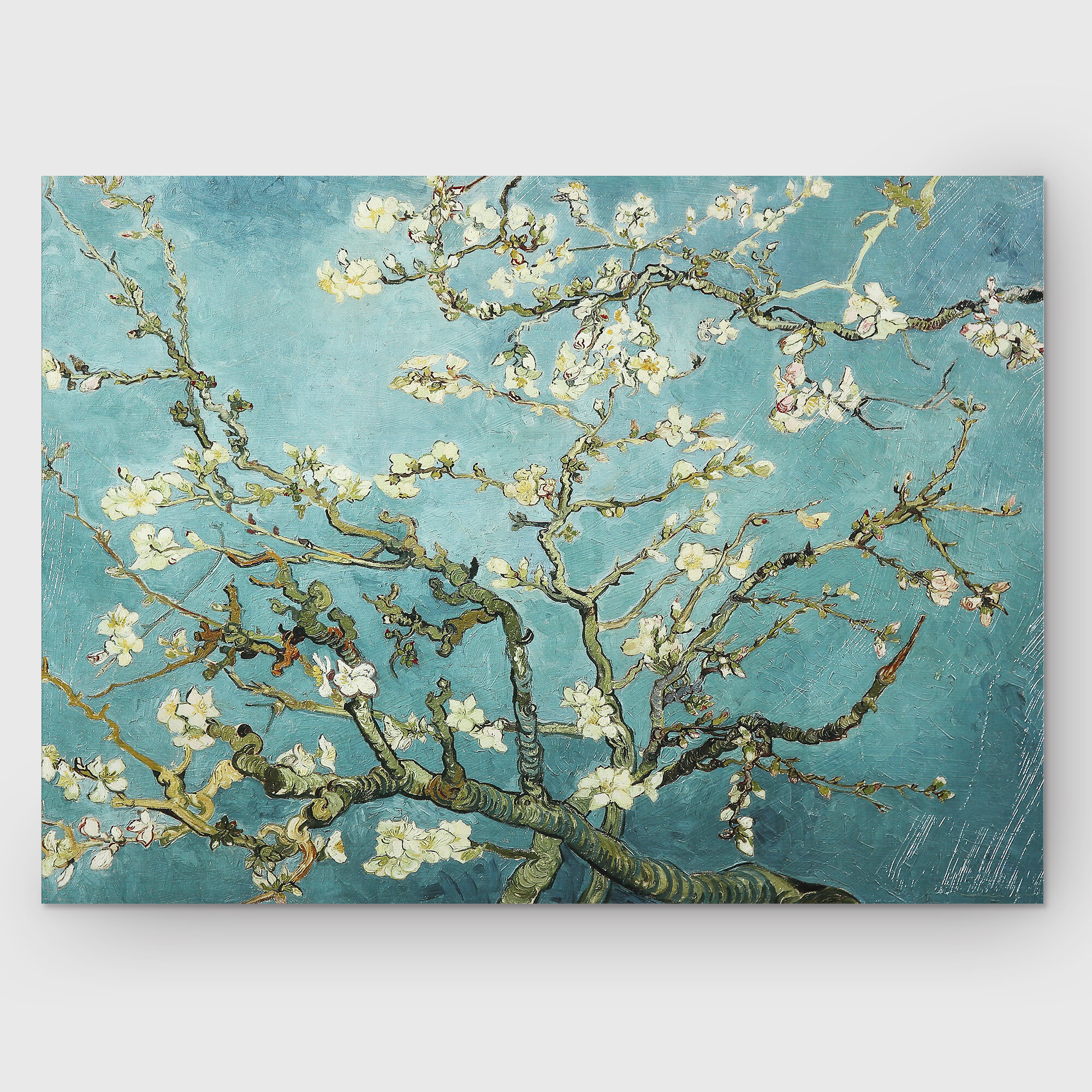 390cc76afde2 'Almond Blossom' Print
