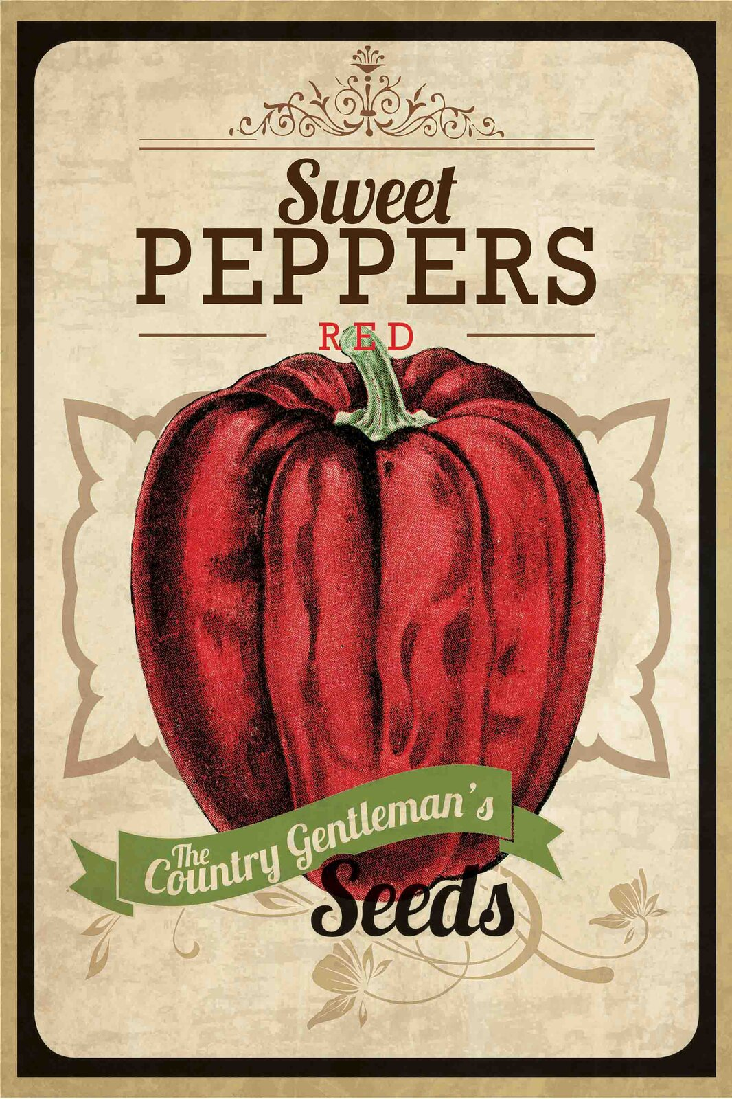 Kitchen Wall Signs - 'Seed Packet Pepper' Painting Print on Wrapped Canvas