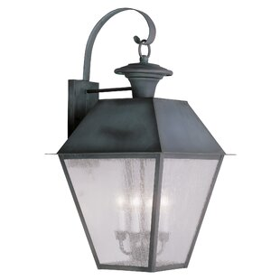 Reviews Cynda 4-Light Outdoor Wall Lantern By Darby Home Co