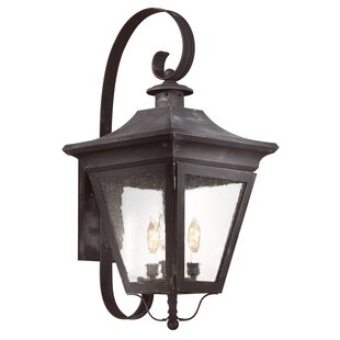 Theodore 3-Light Outdoor Wall Lantern by ..