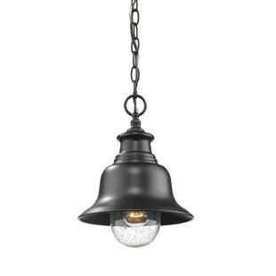 Breakwater Bay Adeline 1-Light Outdoor Pendant