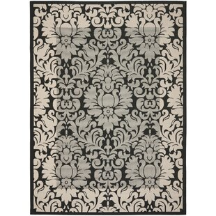 Herefordshire Black / Sand Indoor/Outdoor Area Rug