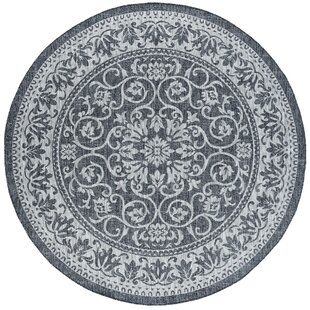 Hayle Transitional Floral Charcoal Indoor/Outdoor Area Rug