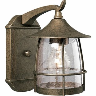 Comparison Triplehorn 1-Light Incandescent Outdoor Wall Lantern By Alcott Hill