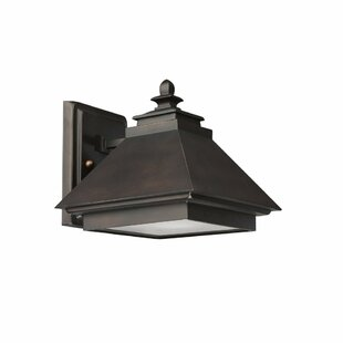 Farrell-Hickey 1-Light Outdoor Wall Lantern
