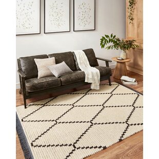Thick Pile Area Rugs Joss Main