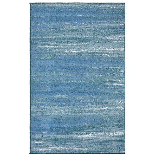 Caribbean Blue Rug Wayfair