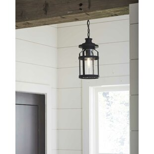 Shefford 1-Light Outdoor Hanging Lantern