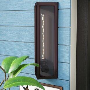 Sasha 1-Light Outdoor Wall Lantern