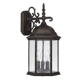 Hearne 3-Light Outdoor Wall Lantern By Darby Home Co Outdoor Lighting