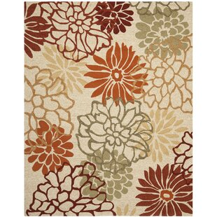 Aldford Hand-Hooked Beige/Orange Indoor/Outdoor Area Rug