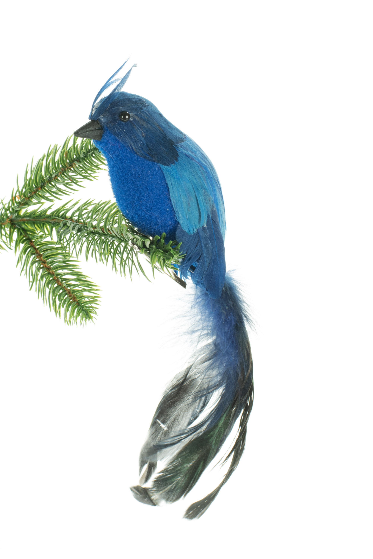 Jj S Holiday Gifts Ltd Clip Bird Hanging Figurine Ornament Wayfair