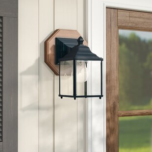 Talmadge 1-Light Outdoor Wall Lantern