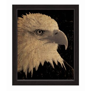 88d7156ddfb2 American Bald Eagle Wall Art