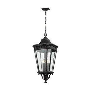 Darby Home Co Chesterhill 4-Light Outdoor Hanging Lantern