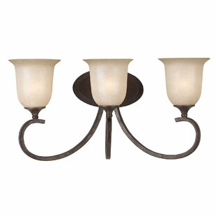 Alcott Hill Xzavier 3-Light Vanity Light