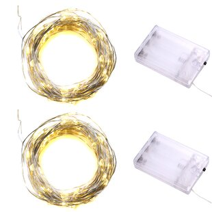Kalish 9.5 ft. 30-Light Fairy String Light (Set of 2)