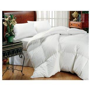 Midweight Down Comforter by Eddie Bauer