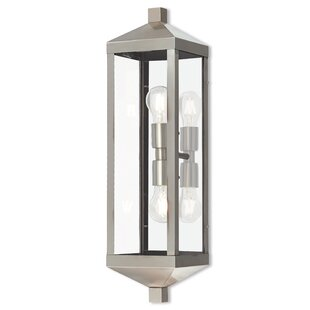 Demery 2-Light LED Outdoor Flush Mount