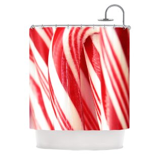Price Check The Painted Forest by Beth Engel Candy Cane Shower Curtain ByEast Urban Home