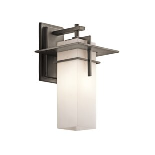 Affordable Price Sulphur 1-Light Outdoor Sconce By Loon Peak