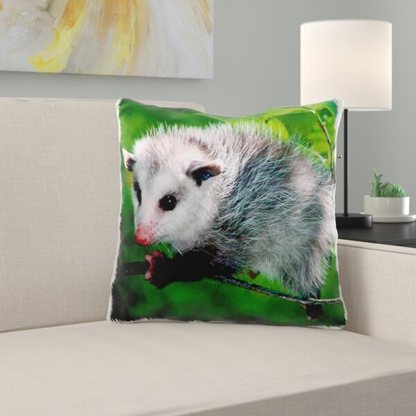 Opossum Wayfair