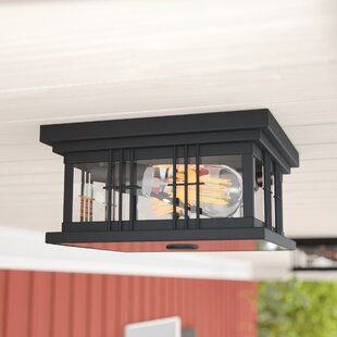 Barnesbury 2-Light Outdoor Flush Mount