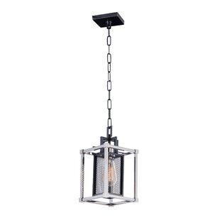 Eligah 1-Light Lantern Pendant by Williston Forge
