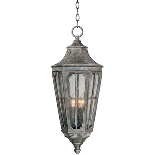 Darby Home Co Nussbaum 3-Light Outdoor Hanging Lantern