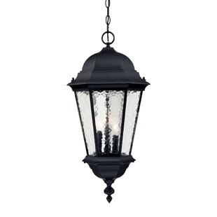 Brook Lane 3-Light Outdoor Hanging Lantern By Darby Home Co Outdoor Lighting