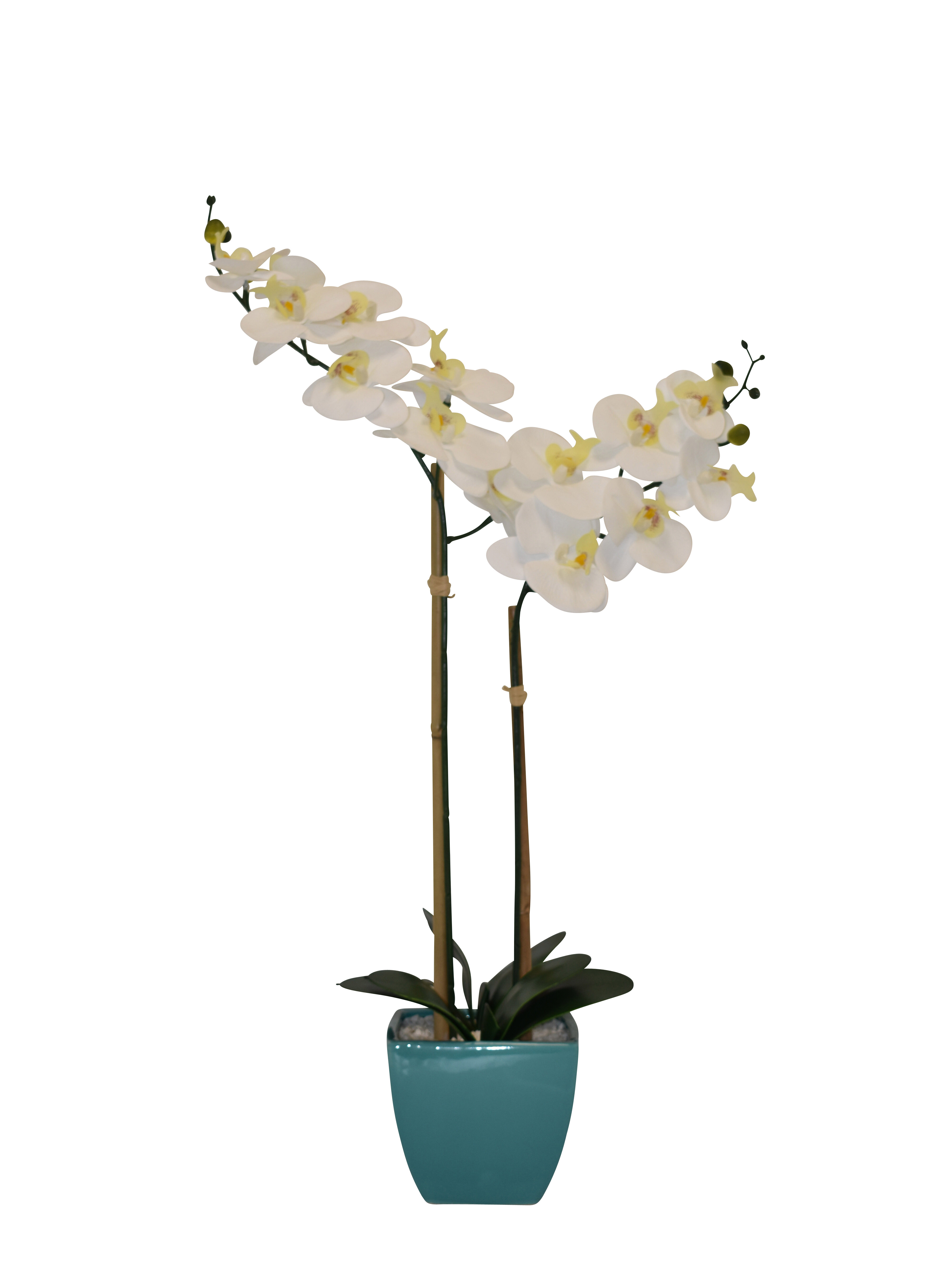 Greenery in Ceramic Vase. Artificial Silk Flowers Realistic Ivory Orchid Flower