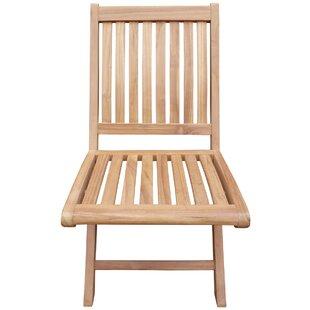 Coster Folding Teak Patio Dining Chair (Set of 2)