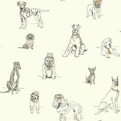 Cats Dogs Themed Wallpaper You Ll Love In 2020 Wayfair