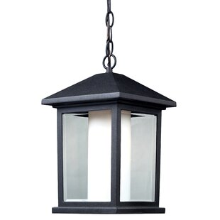 Coupon Magnusson 1-Light Glass Shaded Outdoor Hanging Lantern By Andover Mills