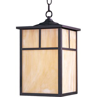 Boricco 1-Light Outdoor Hanging Lantern By Loon Peak Outdoor Lighting